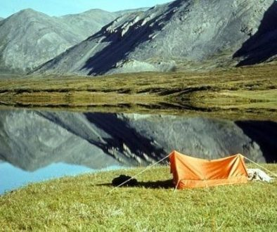 Orange tent camping spot among nature