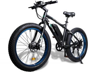ECOTRIC fat tire electric bike (1)