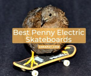 Best Penny Electric Skateboards on the Market for 2020