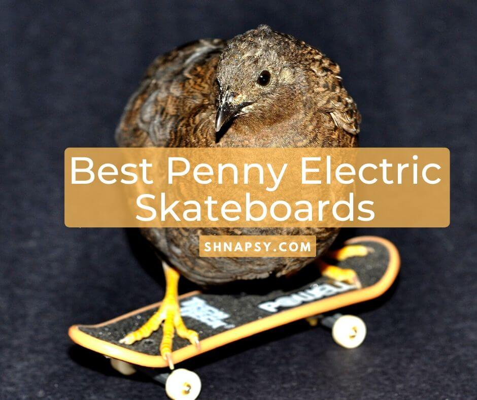 Best Penny Electric Skateboards on the Market for 2021